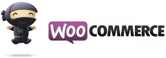 Learning about WooCommerce and turning your website into an online store.