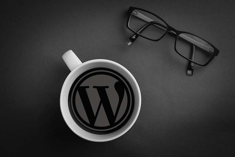 Learn WordPress from a WordPress Expert. WordPress Training Gold Coast.